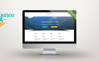 Giftfluence website feature
